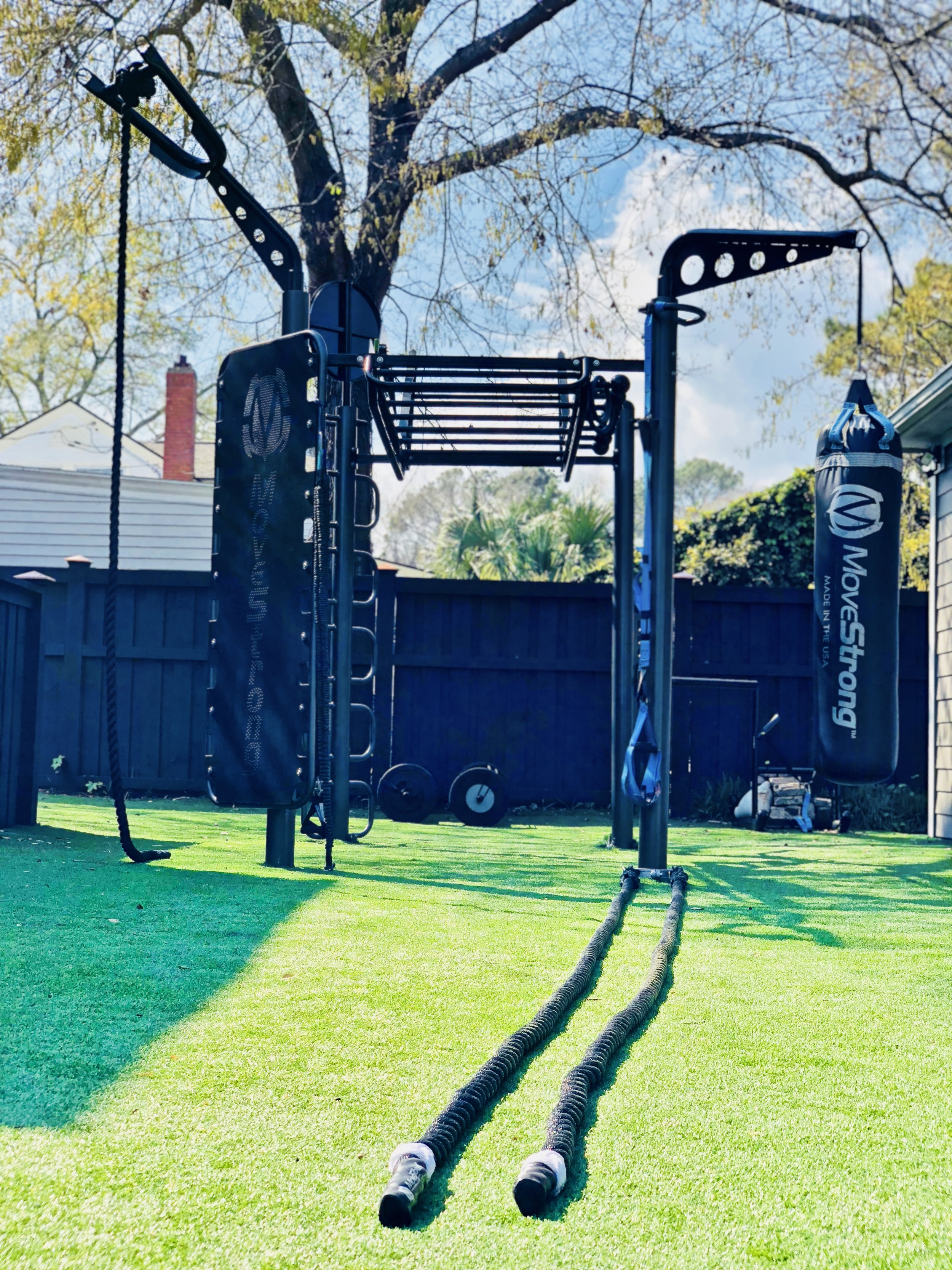 MoveStrong T-Rex Outdoor Functional Training Station