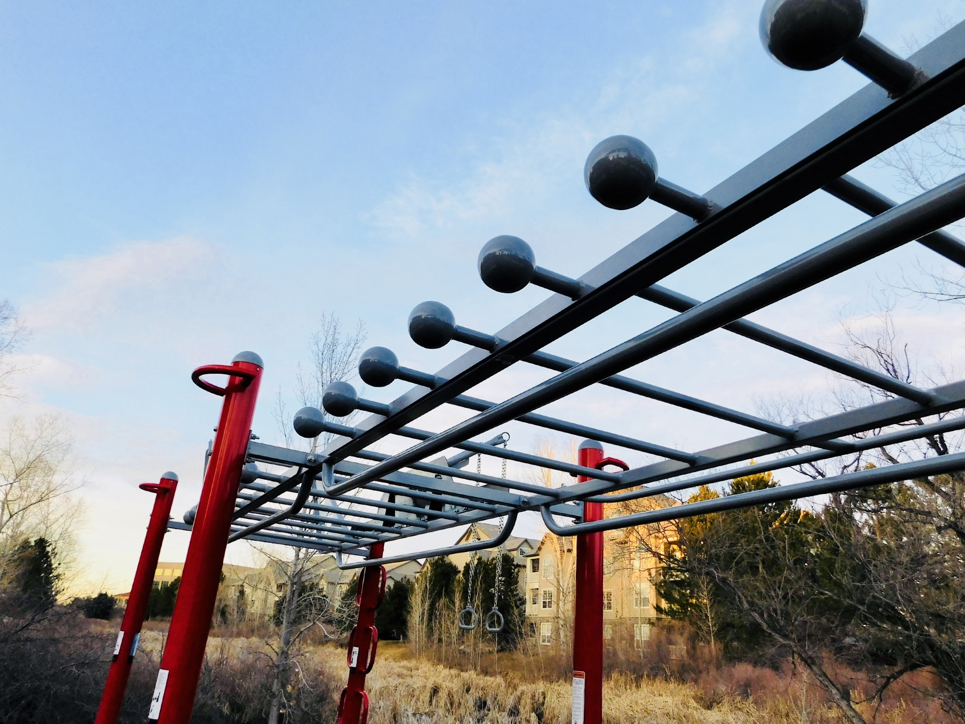Double Monkey Bars with Side Rail Pull-up bars and Globe Grip rail