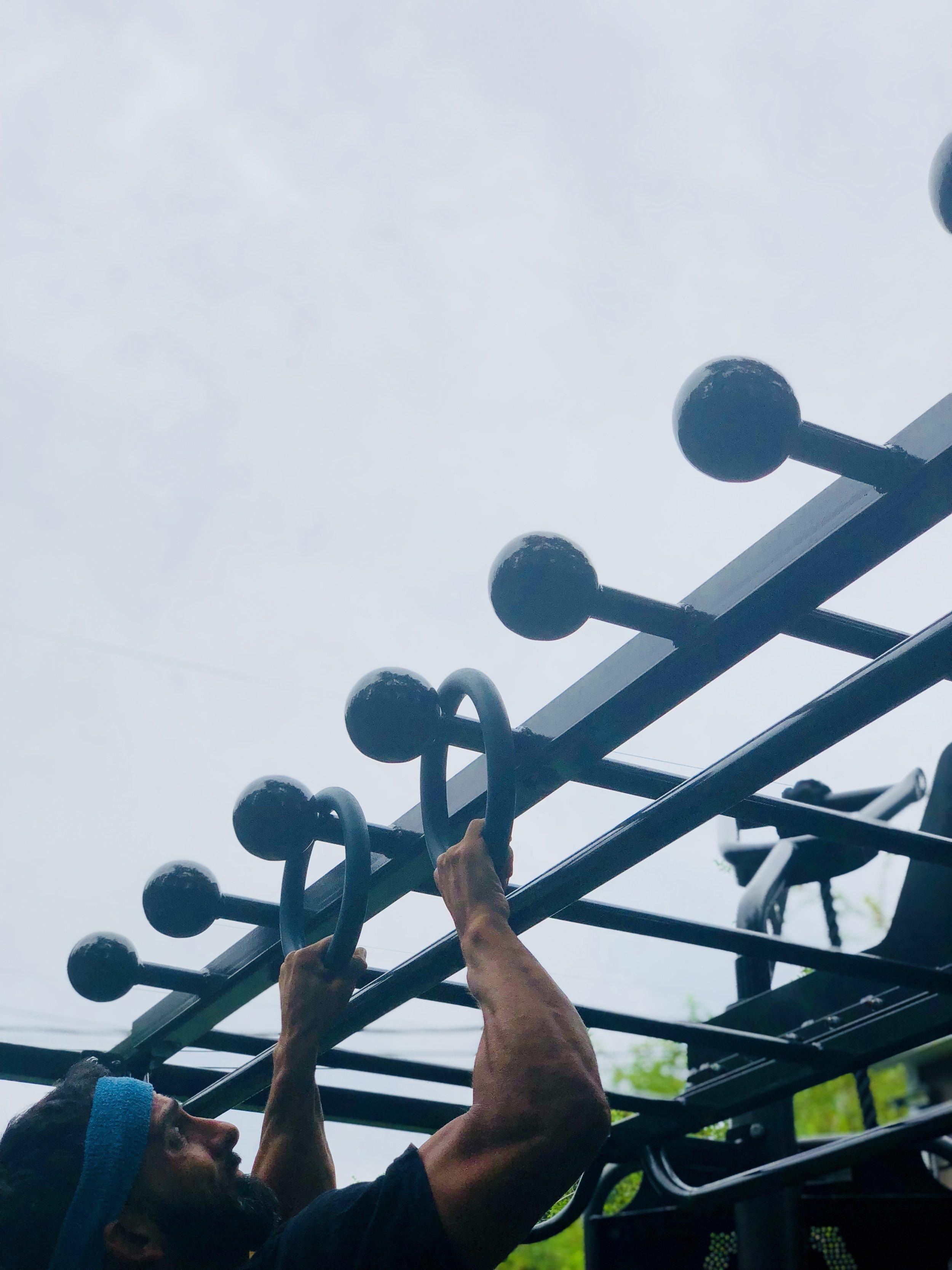 Monkey Bars with Side Rail Globe Grip rail