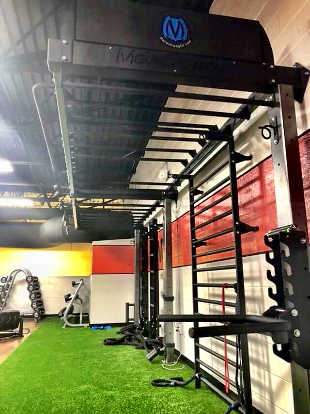 Wall Mount Functional Training Station