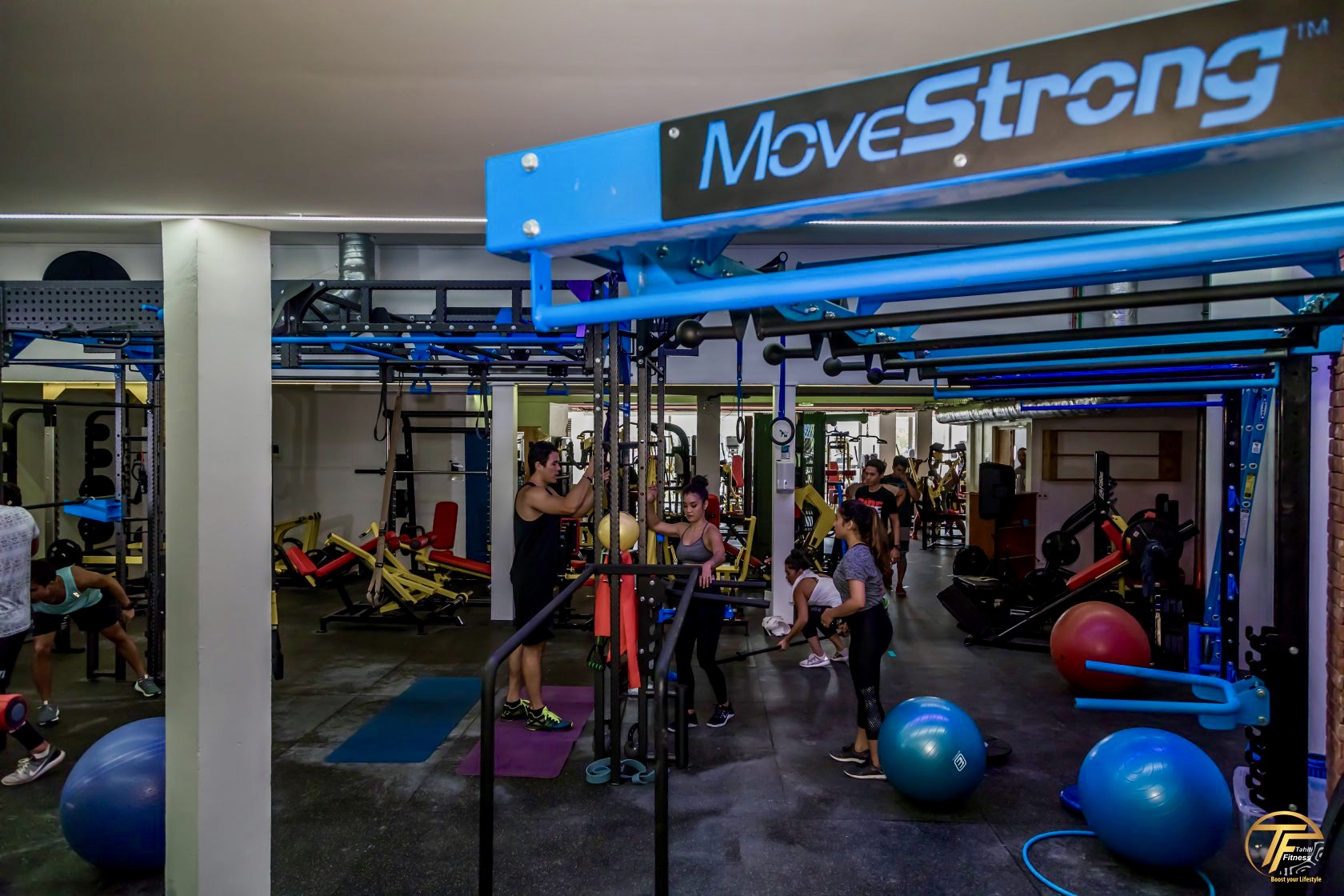 moveStrong Nova Wall Functional Training Station