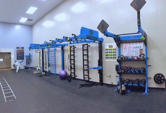 Nova Wall Mount Functional Training Station