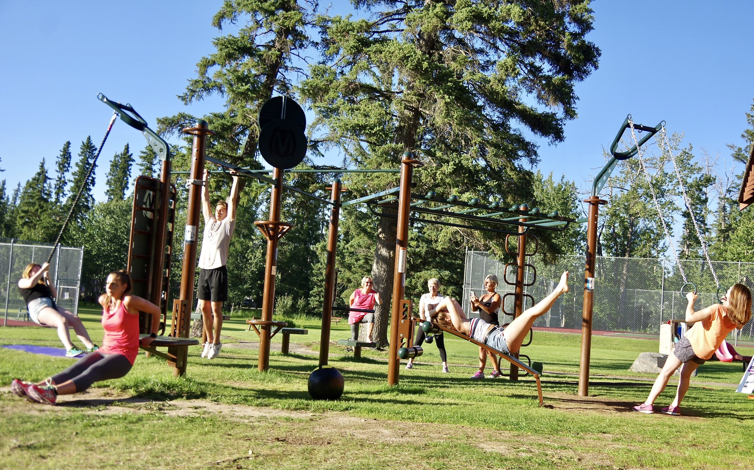 Calisthenics Park Workout Functional Fitness