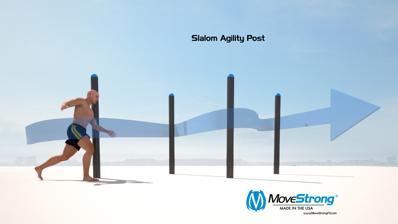 slalom agility post_OC_render.png