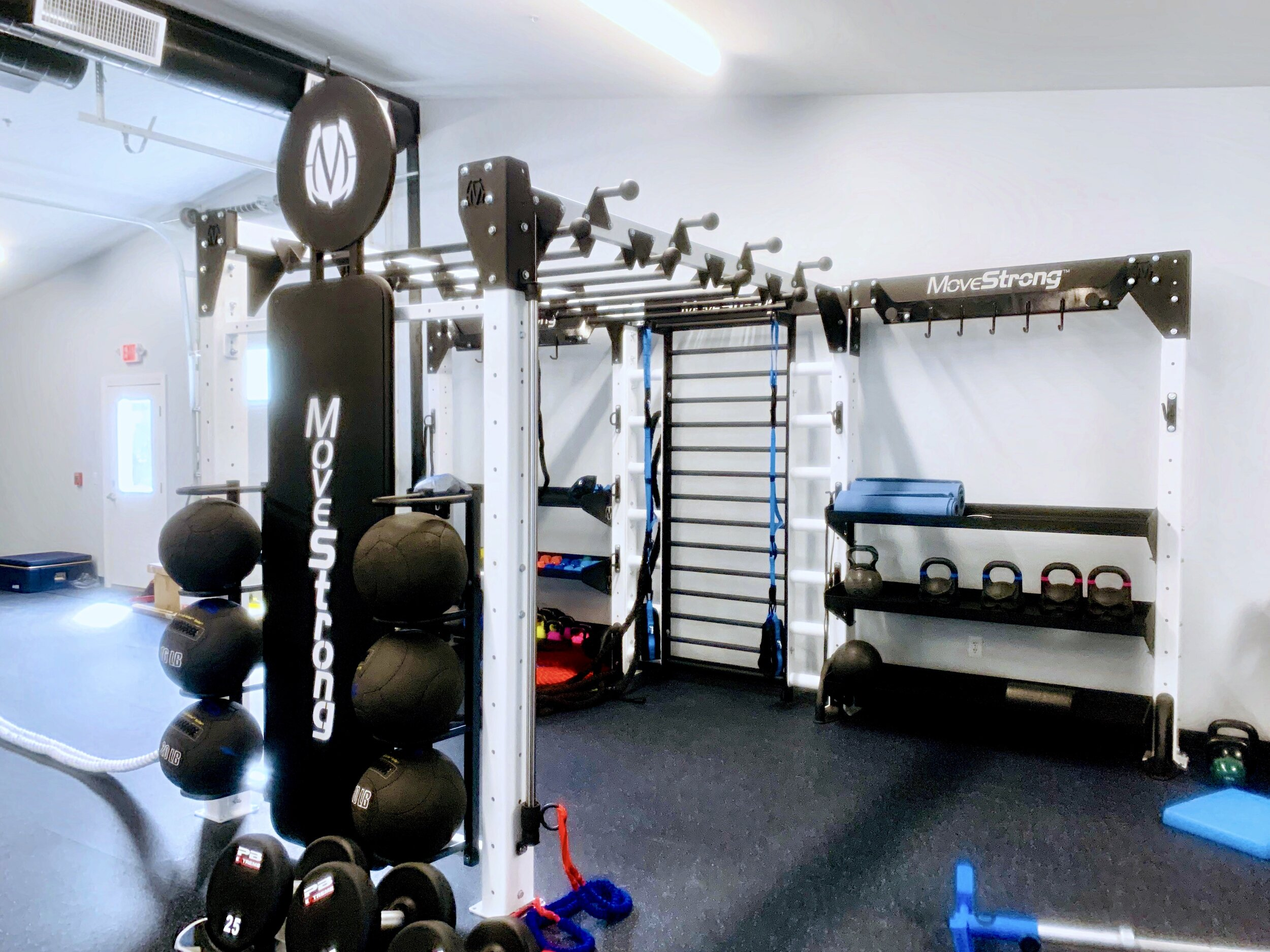 Functional Training equipment for Physical Therapy Clinic