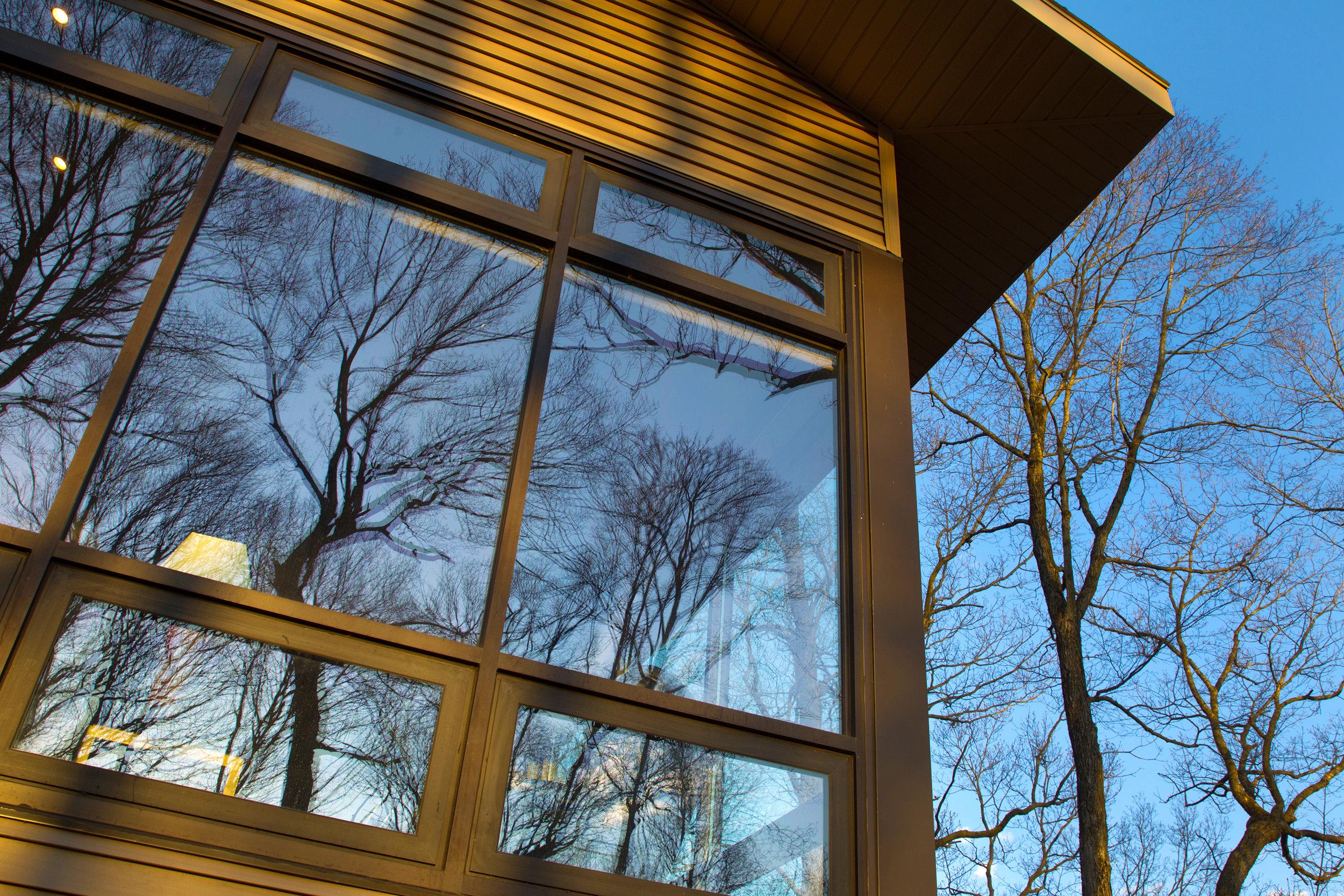 Cabin - reflection.jpg