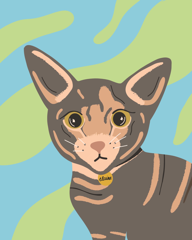 elaine-the-cat.jpg