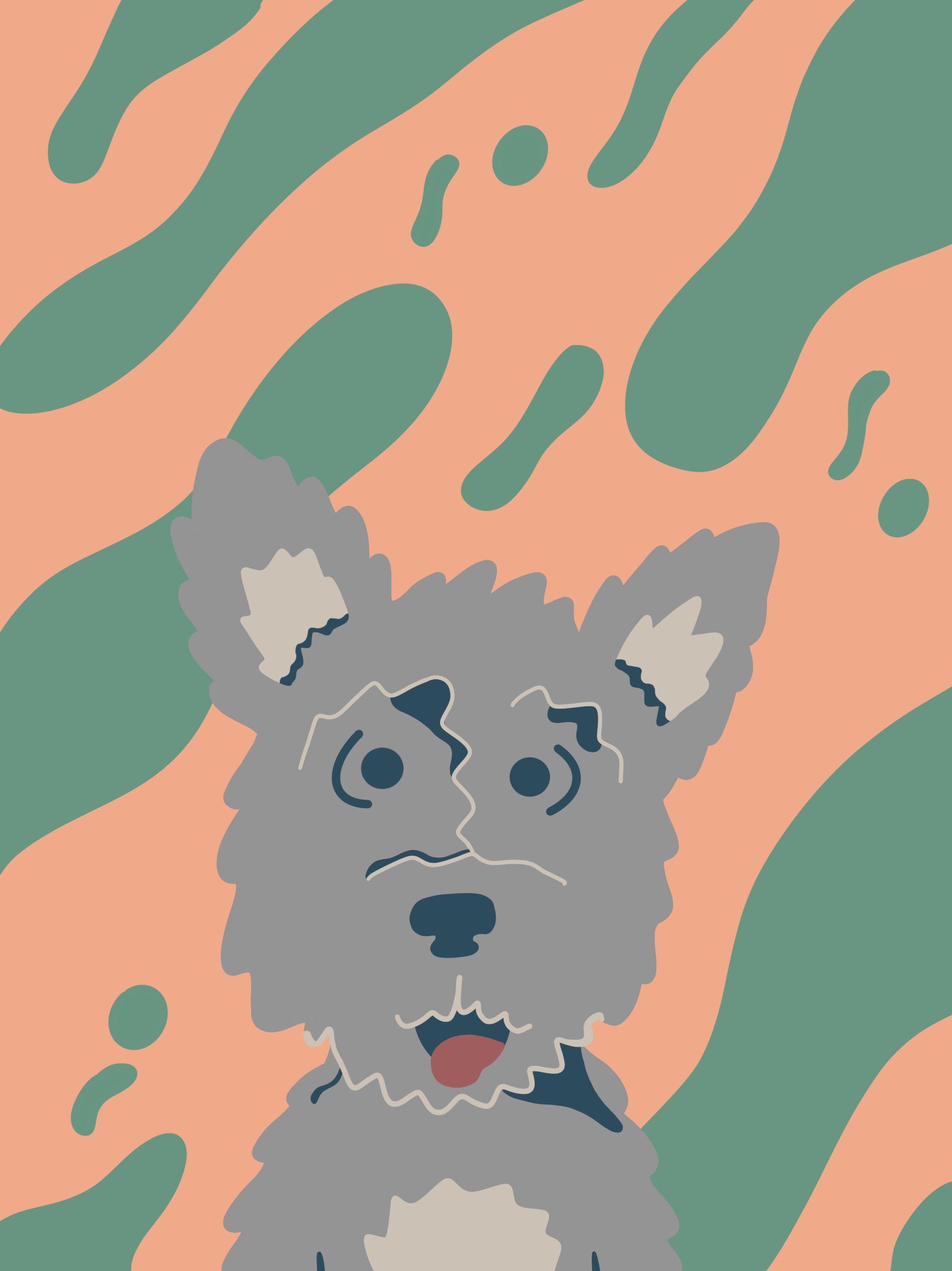 Georgia-the-dog.jpg