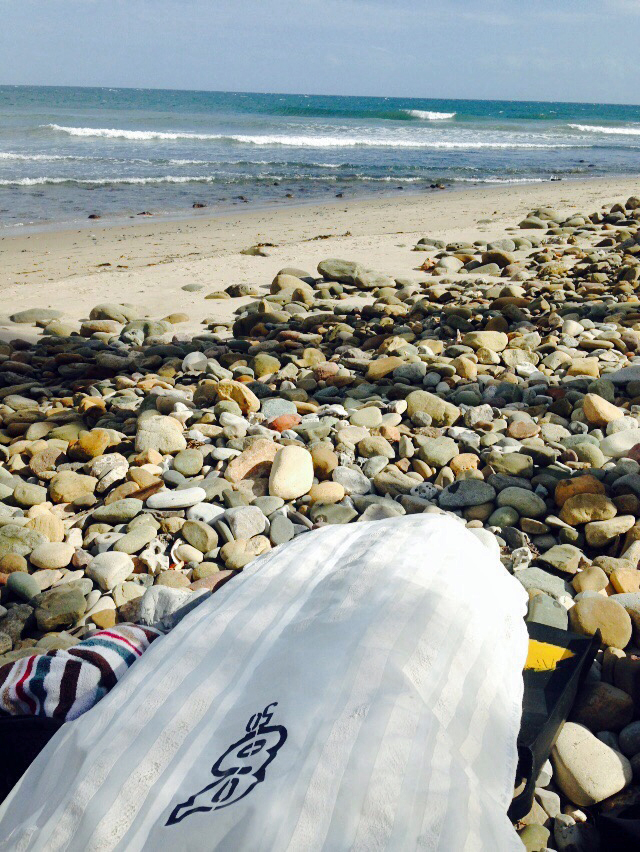 Phileas Surfmat Surf mat Andrew Stephen Buck 542828