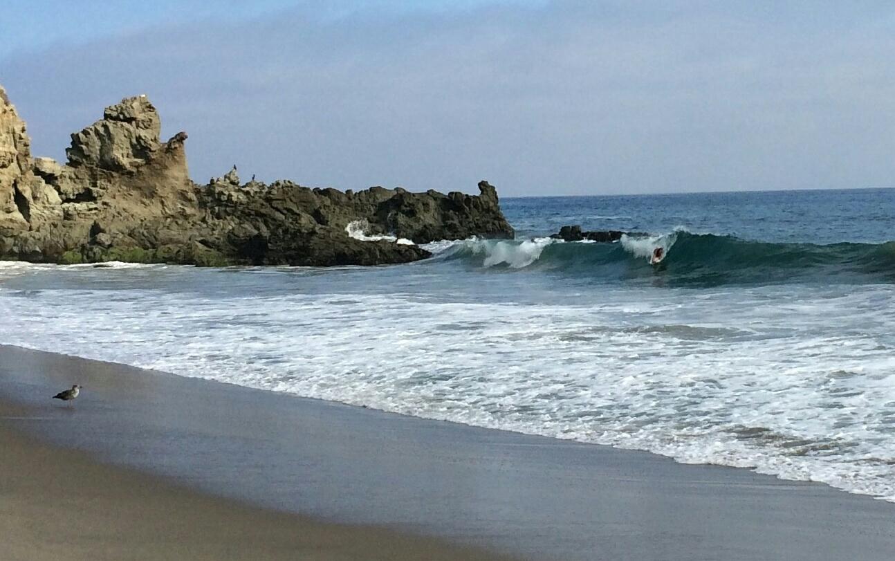 Surfmat surf mat Phileas Matt Herman 54373