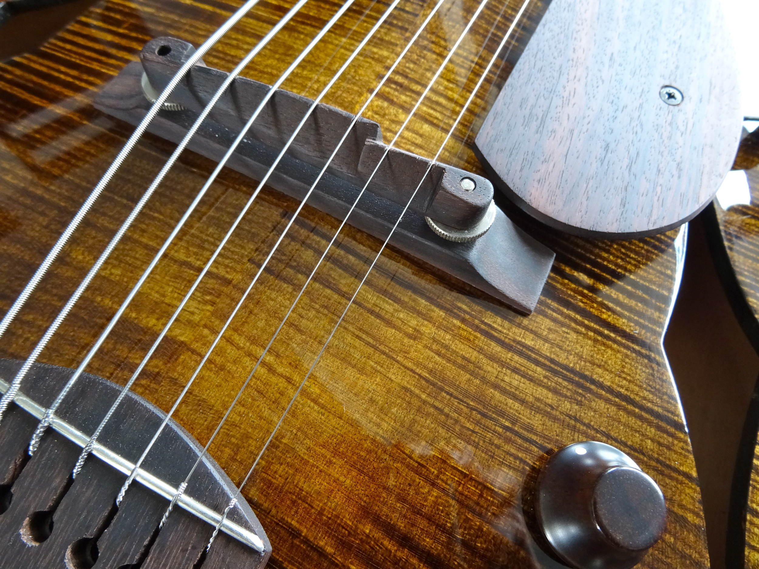 Note the fret-wire built in to the tailpiece.