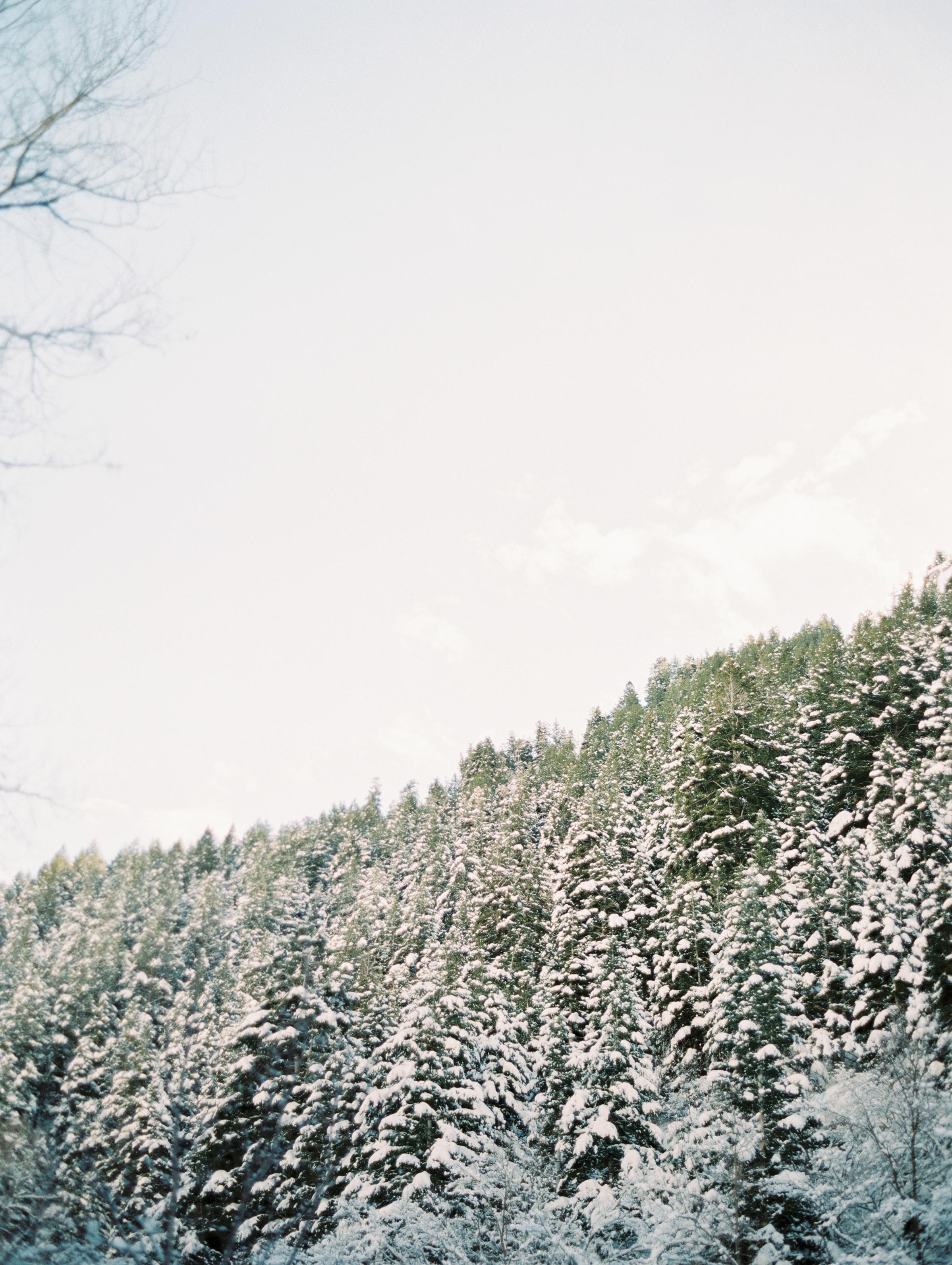 BellaCosa_WinterWonderland-53.jpg