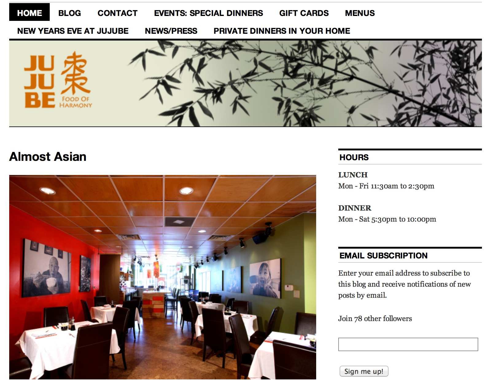 BEFORE:  Jujube's Website on WordPress