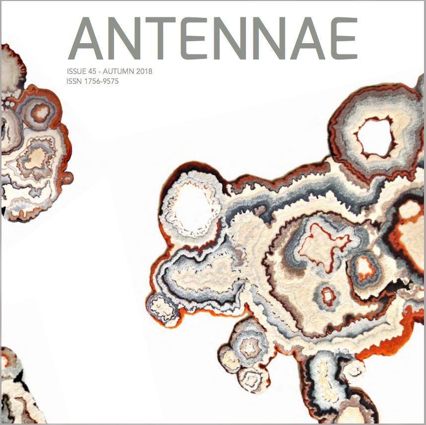 Matter Matters:  Lecanora Muralis    Swanson, Cole.  Lecanora Muralis,  Antennae: Journal of Nature in Visual Culture, No. 45. London, UK, 2018.  www.antennae.org.uk/home/4594152034