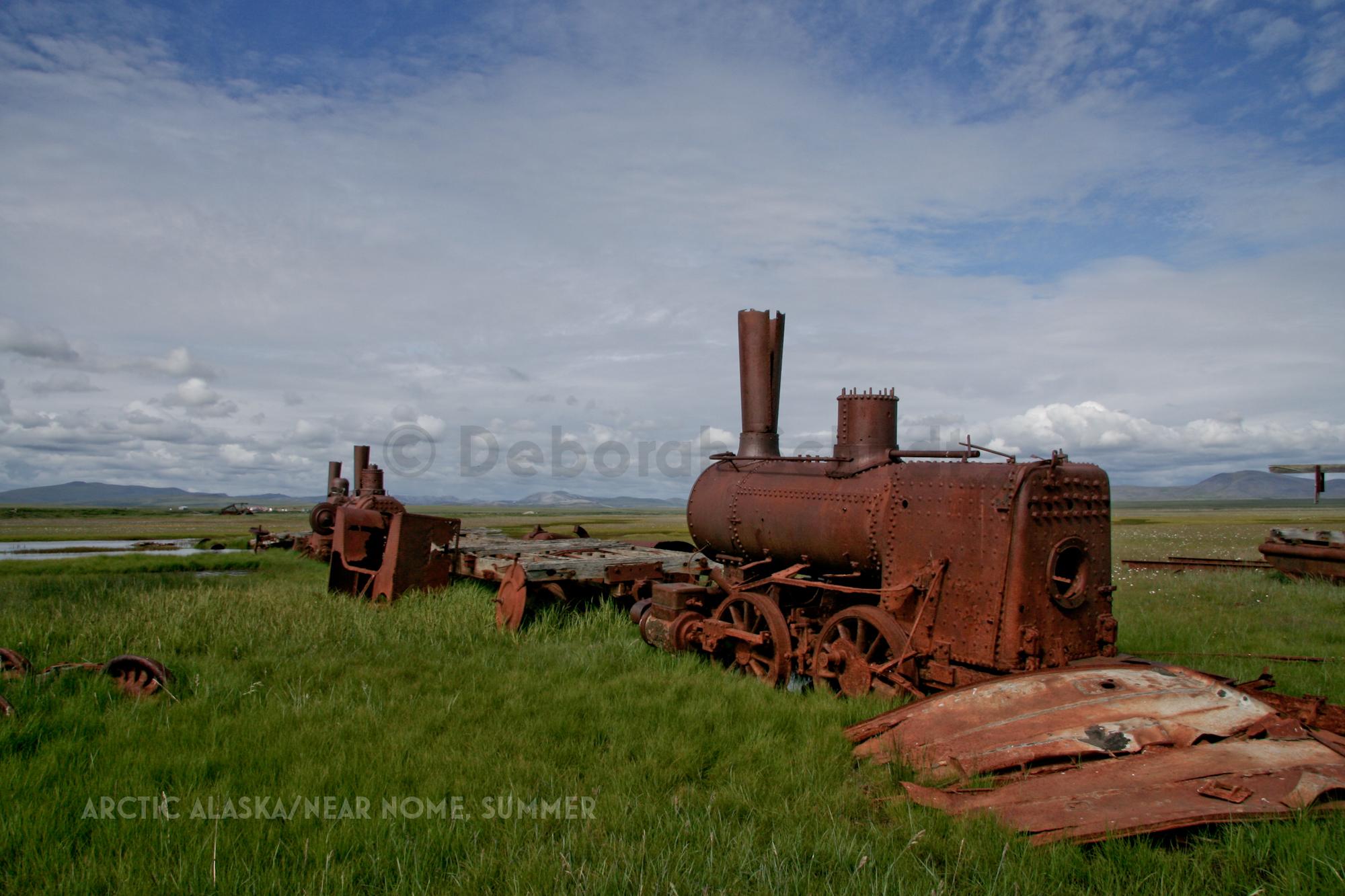 CT1. Arctic Alaska_ Train to Nowhere_ summer.jpg