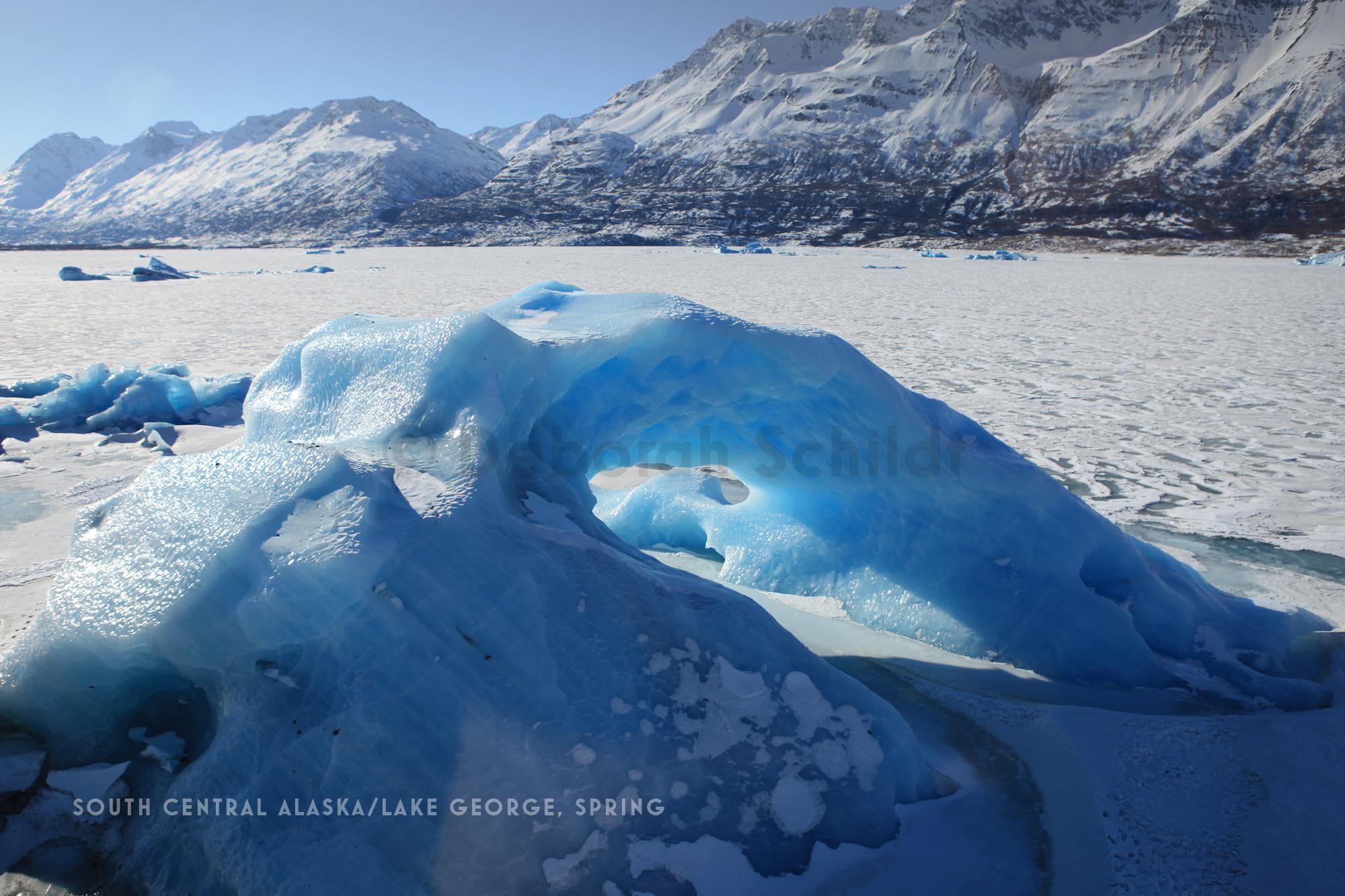 CT1.South Central Alaska- Lake George_ spring.jpg
