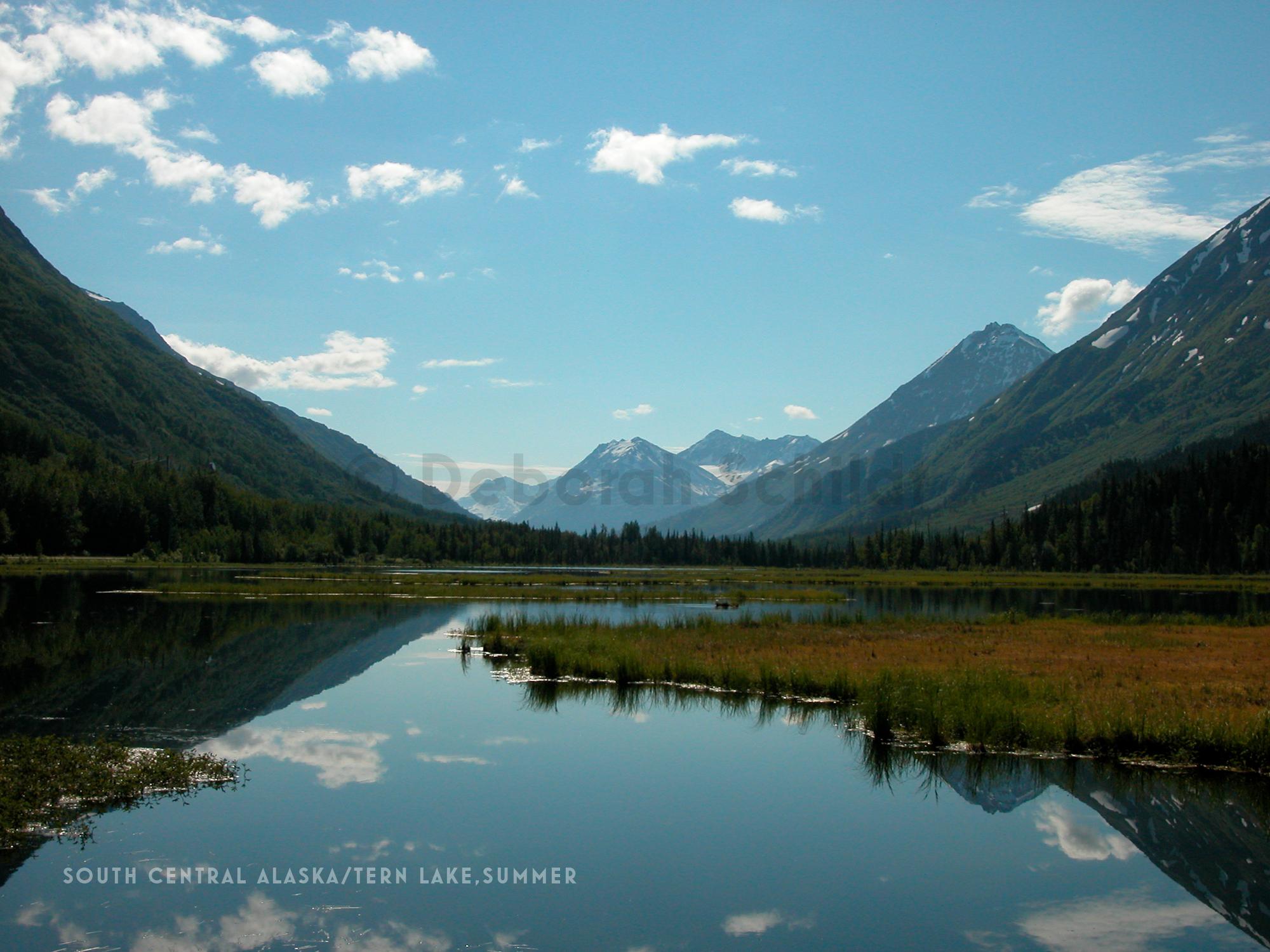 CT15. South Central Alaska-Tern Lake_summer.jpg