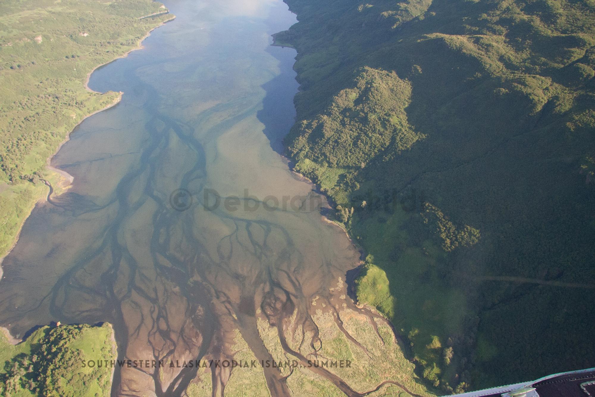 CT6 Southwestern Alaska:Kodiak_ summer copy.jpg