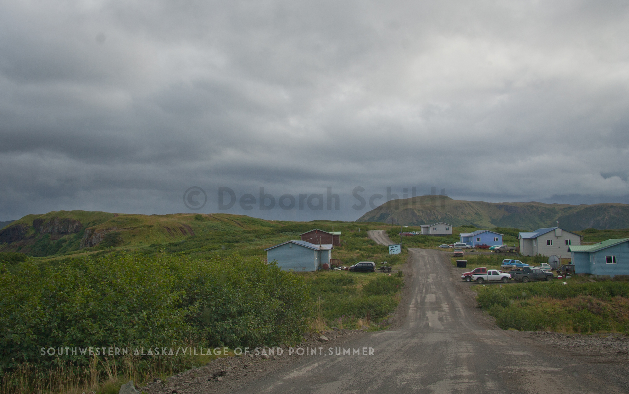 CT17Southwestern Alaska- Sand Point_ late summer.jpg