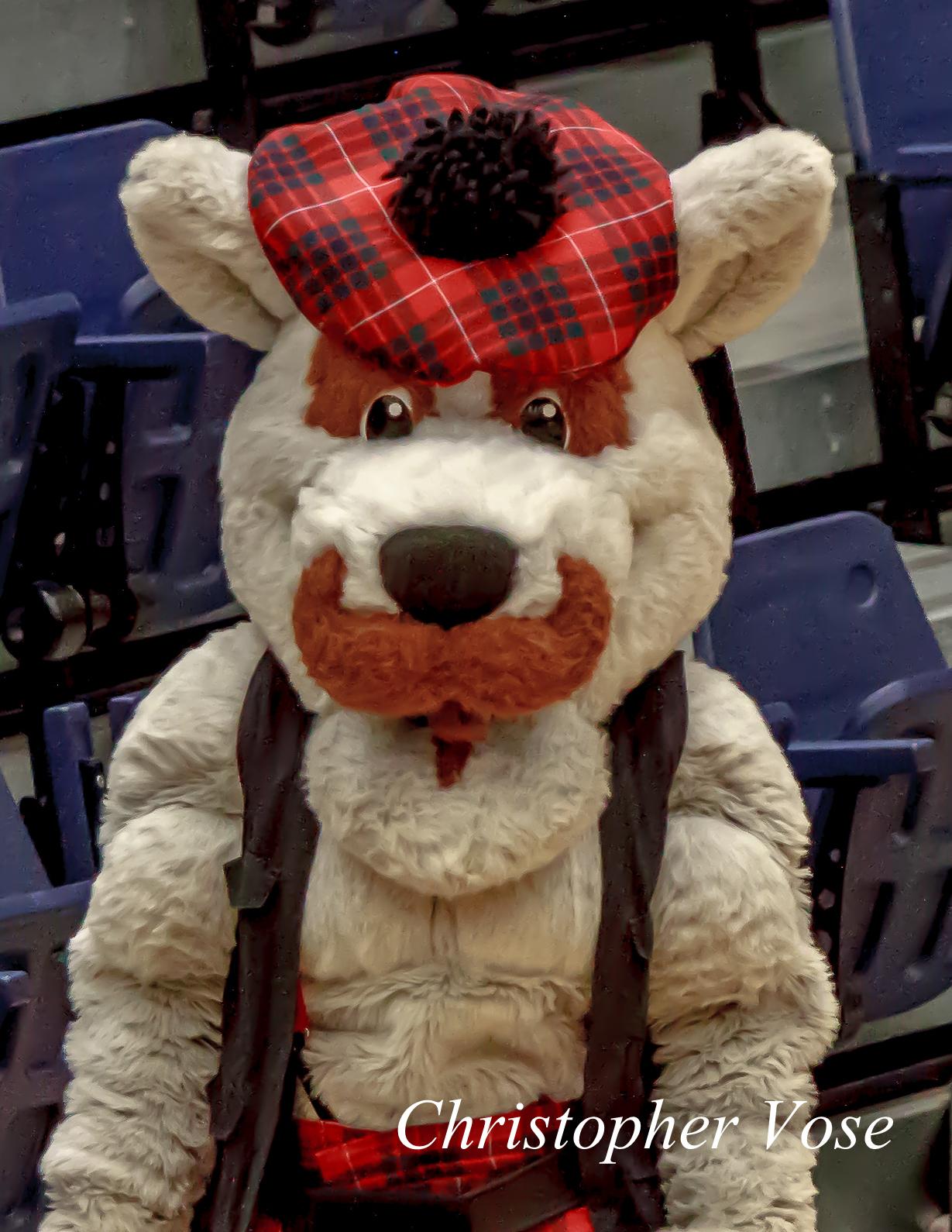 2012-10-18 McFogg the Dog.jpg