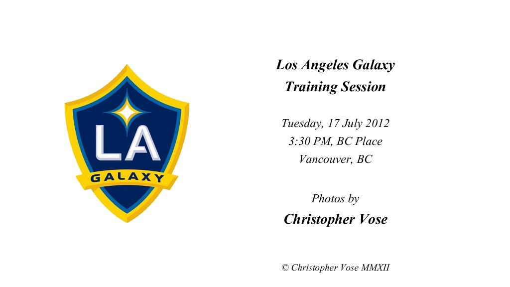 2012-07-17 Los Angeles Galaxy Training Session.jpg