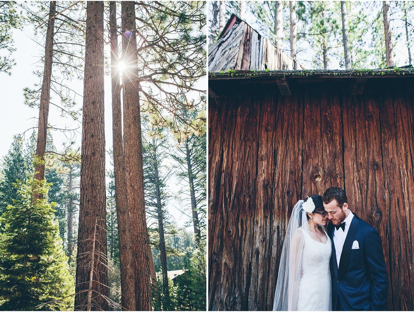 Damiano + Rebecca | Camp Richardson | Lake Tahoe, California | www.vitaeweddings.com