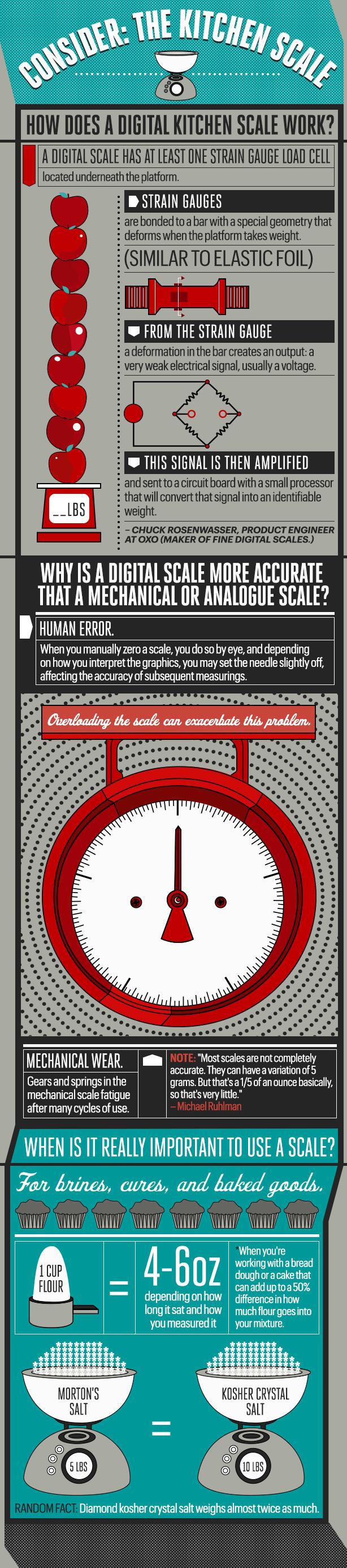 kitchen-scale-infographic.jpg