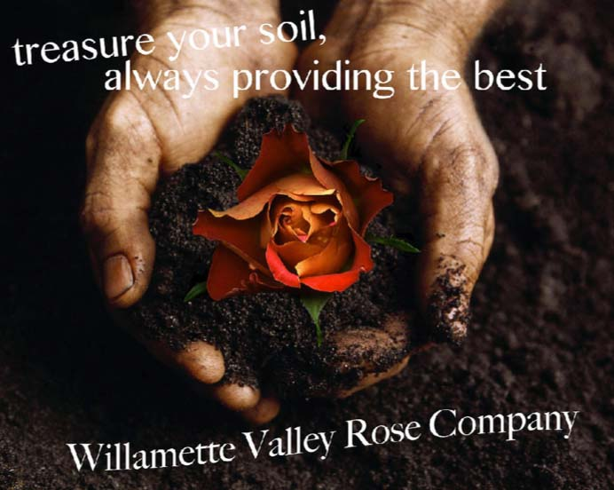 Wilamette Valley Rose Company Ad.jpg