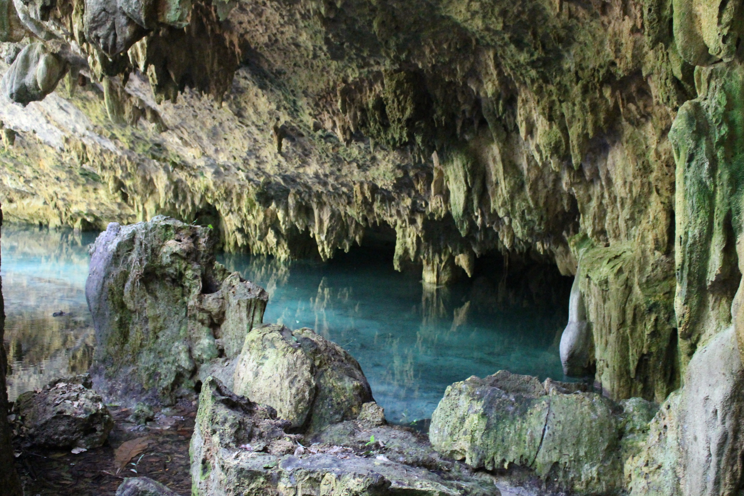 Sac Actun Caves from the surface.