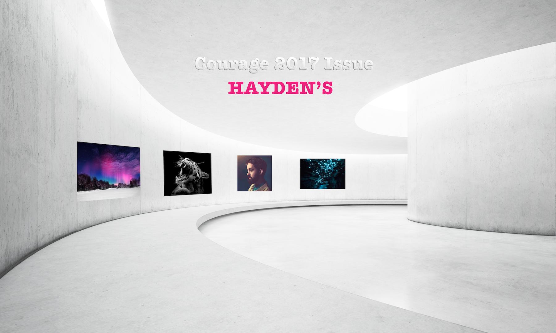 haydenscouragegallery