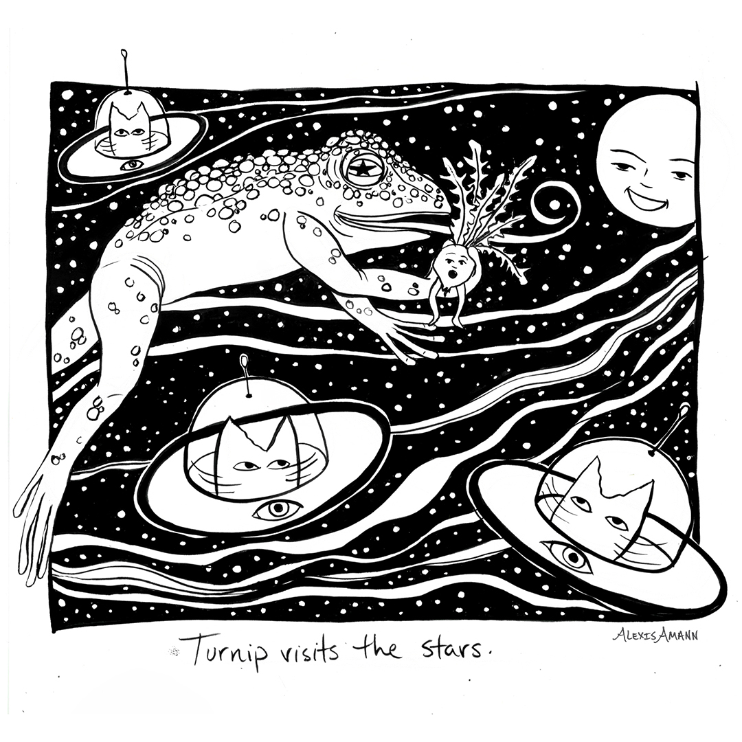 10 Turnip Visits the Stars 72 wm.jpg