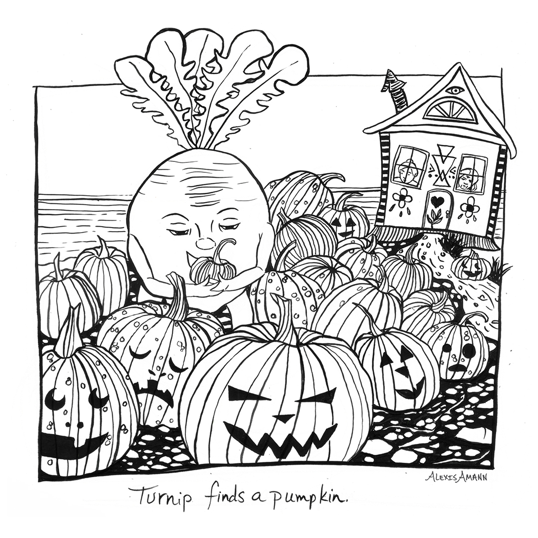 18 Turnip Finds a Pumpkin 72 wm.jpg