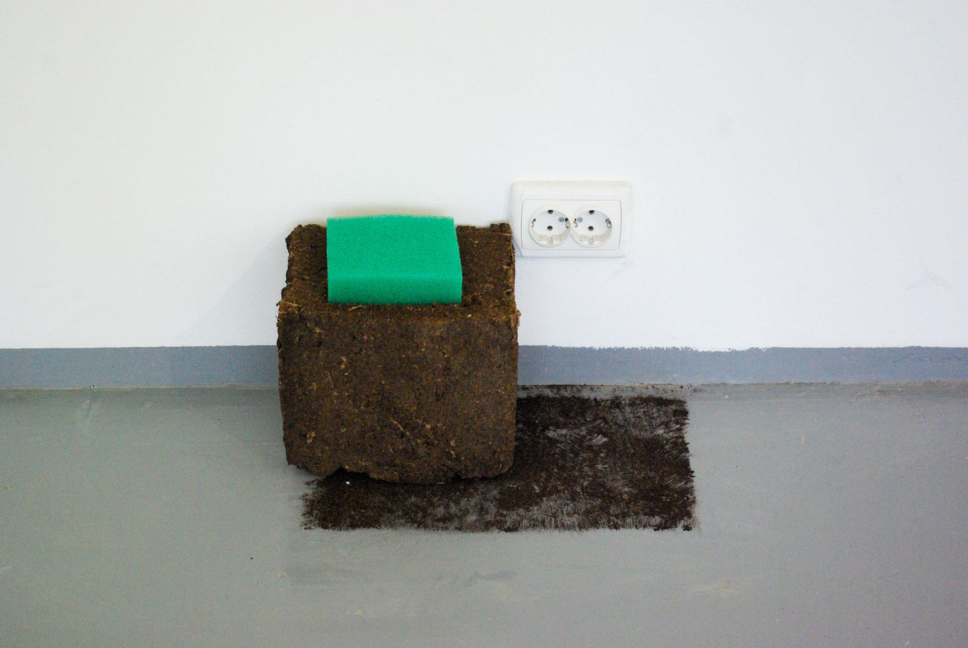 Two Colonies (detail), peat, foam filter, 2014