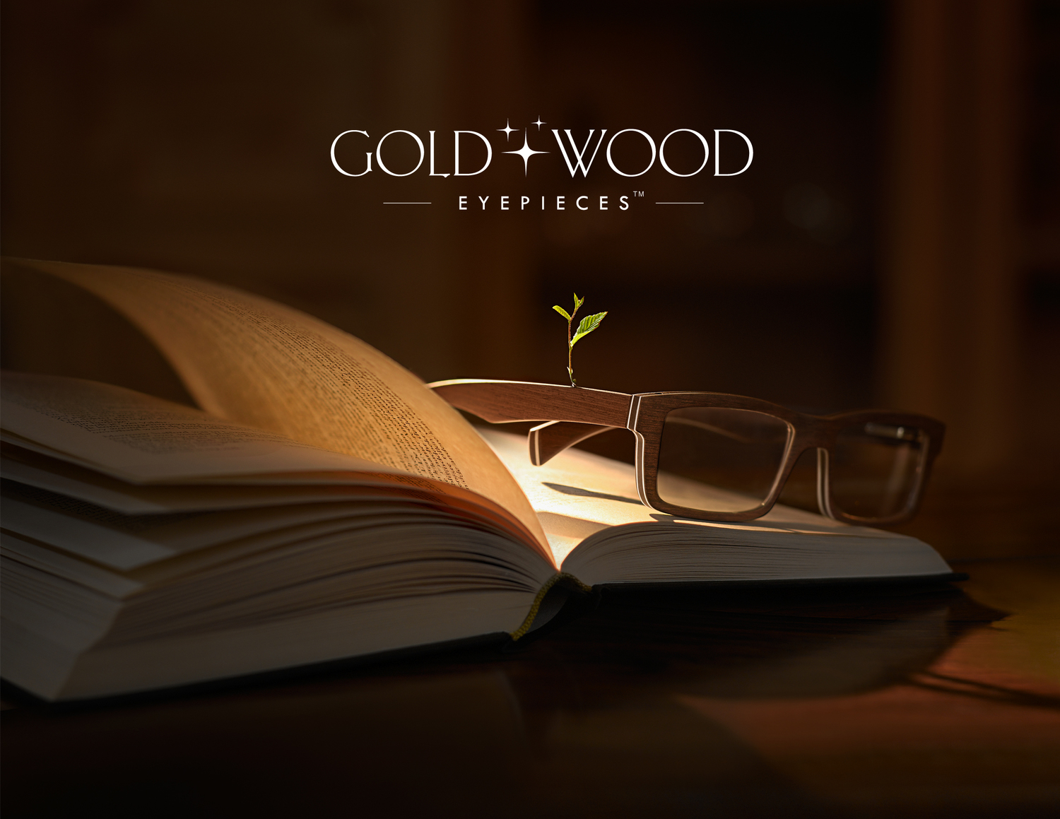 Gold and Wood.jpg