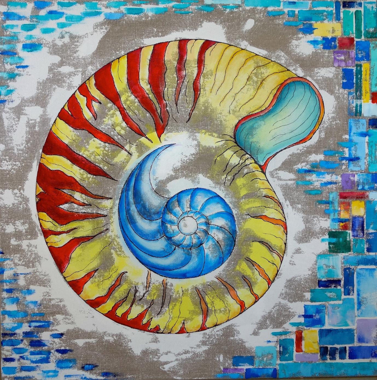 Nautilus caerula