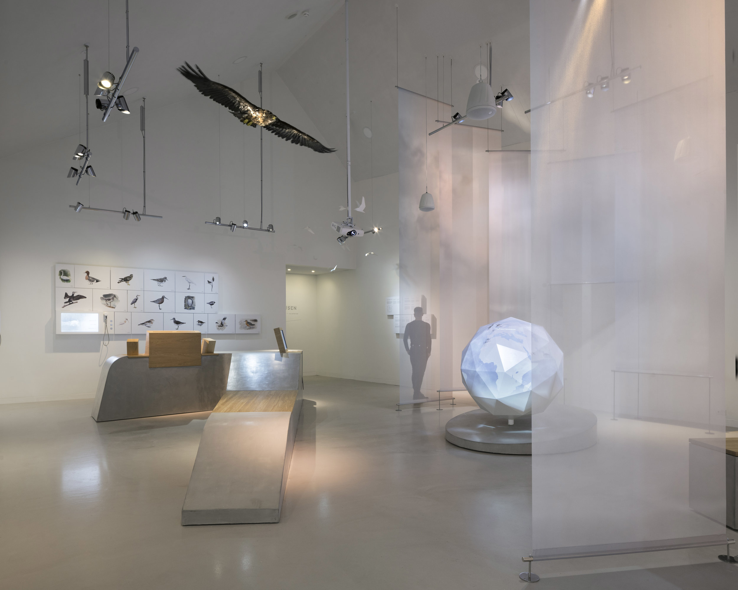 Tinted lighting  The elevated world in which birds often inhabit of birds is high in the sky where natural light is in constant change. From moonlight, sunrise and sunset, the birds experience an extensive variety of colours throughout the passage of a day. Within the exhibition, we have worked with carefully selected and tested glass colour filters to reference the natural light and the softness of the sky with focus on pastel colours.