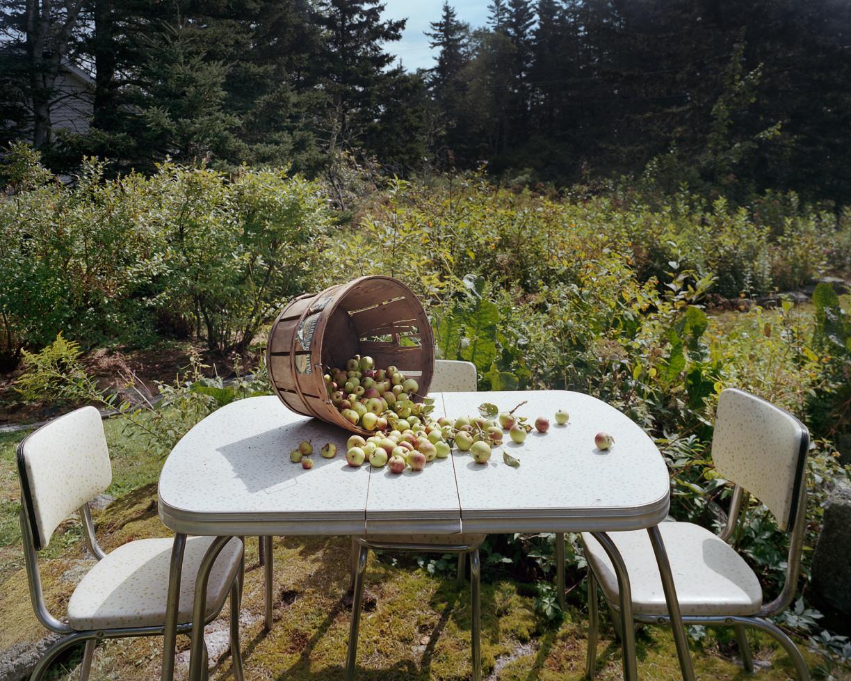 September Crab Apples