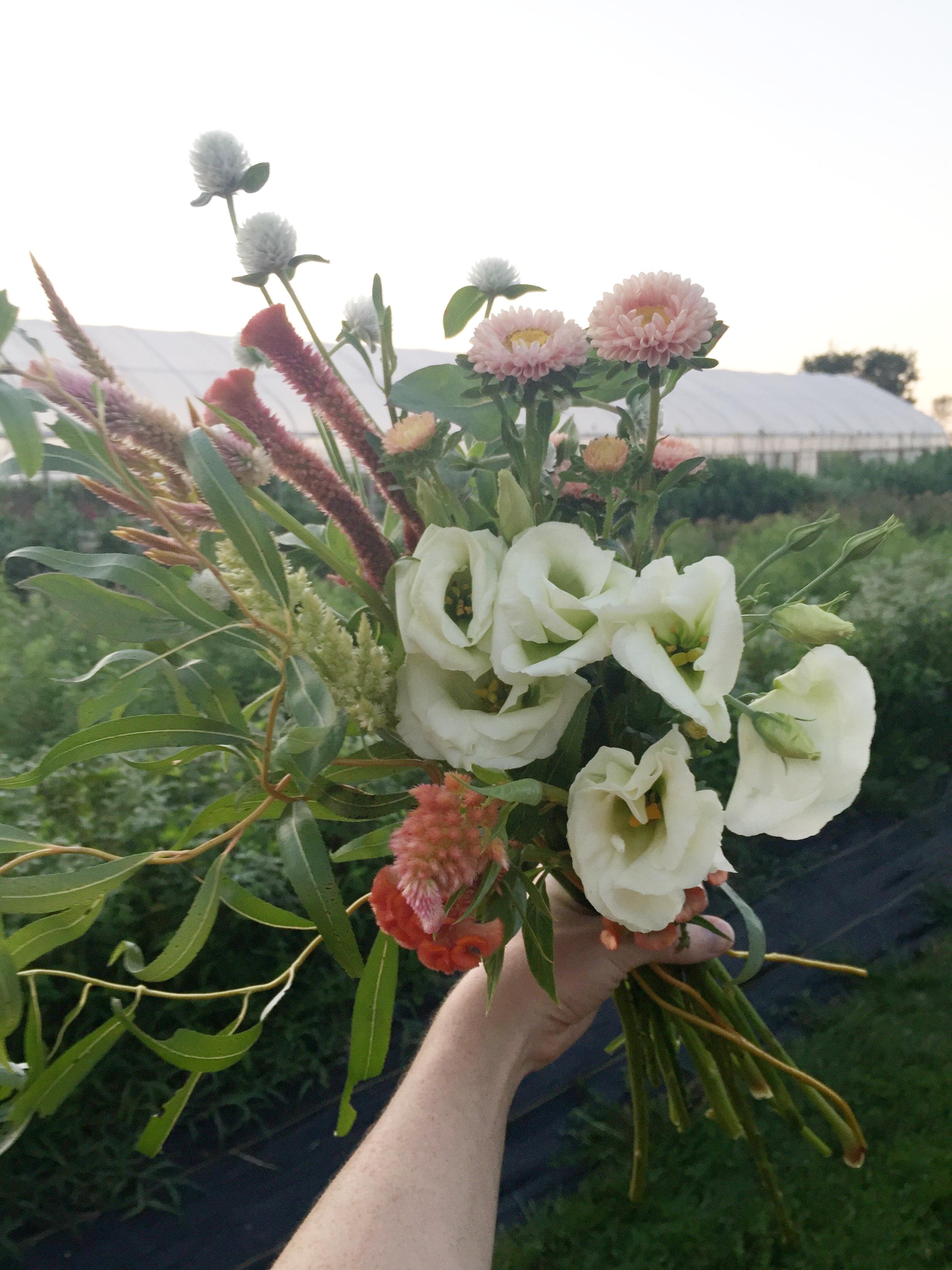 Wild Green Yonder style bouquet full of Greenstone Fields flowers