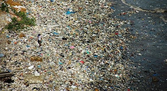 Pacific Ocean Garbage Patch.jpg