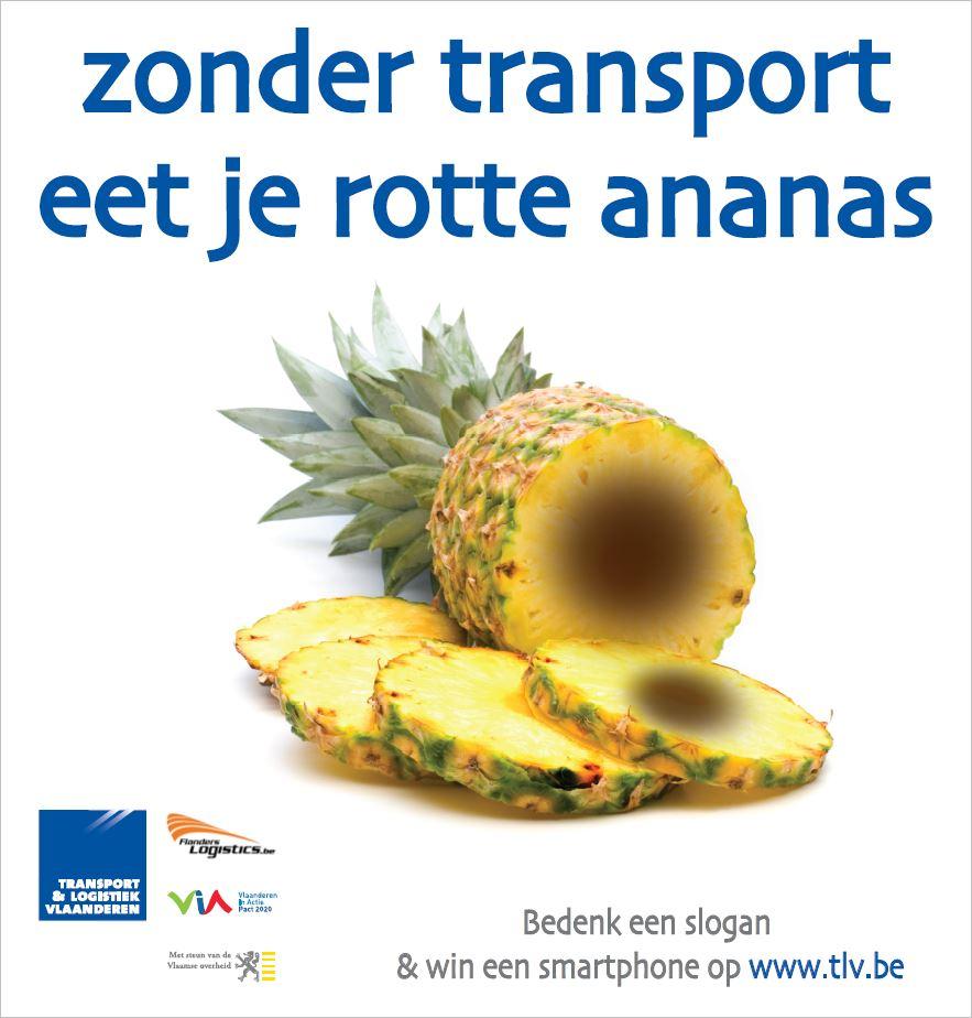 tlv ananas.JPG