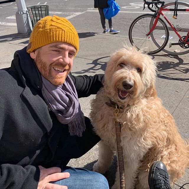 He loves doing errands around the neighborhood. Always making friends when he's waiting outside. :) #doodles #bklyn #nyc #doodlesofinstagram #parkslope