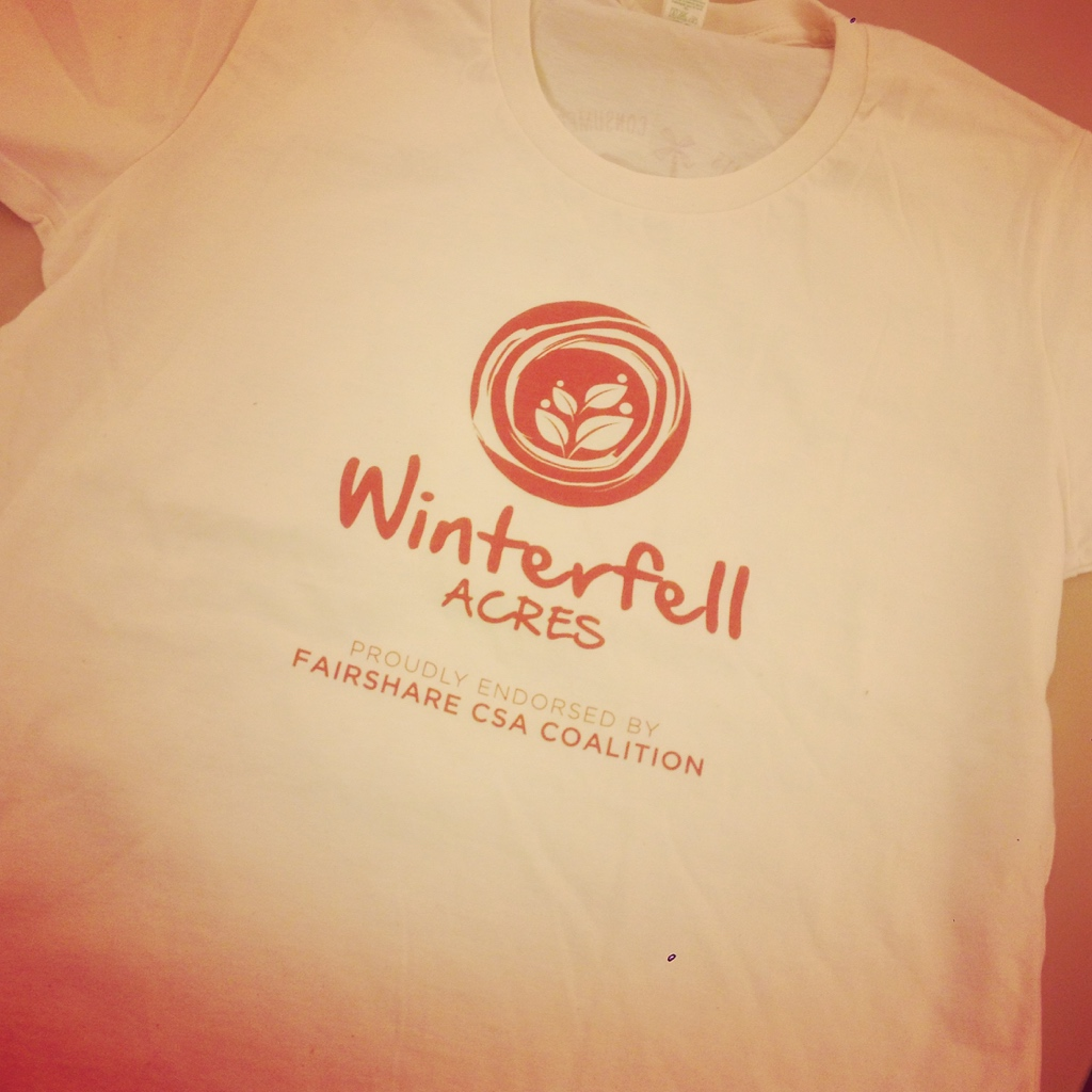 T-shirts came in! If you didn't get an order in- don't worry I am going to order more next winter!