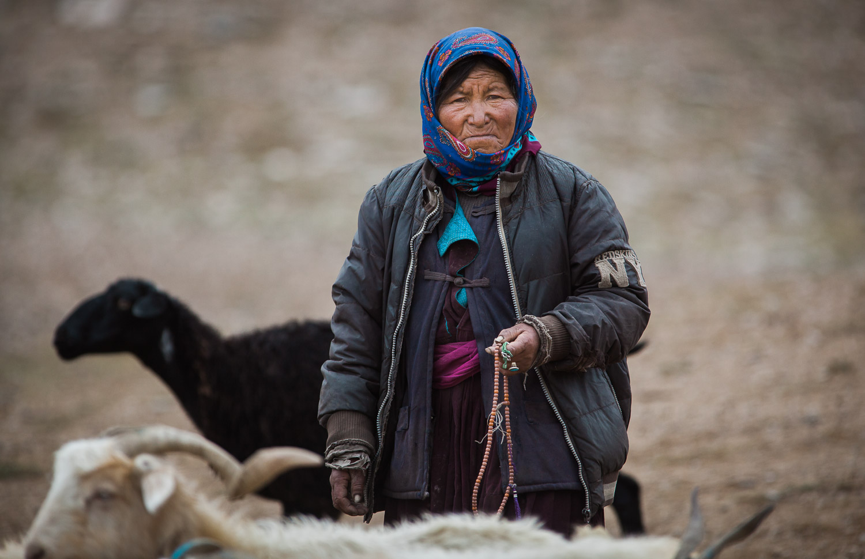 2017_Ladakh Nomad1-1-5.jpg