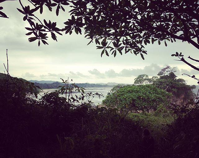 #Sunday #funday in #nosara #caminatas 🚶🏽♀️🚶🏽♀️🚶🏽♀️🚶🏽♀️