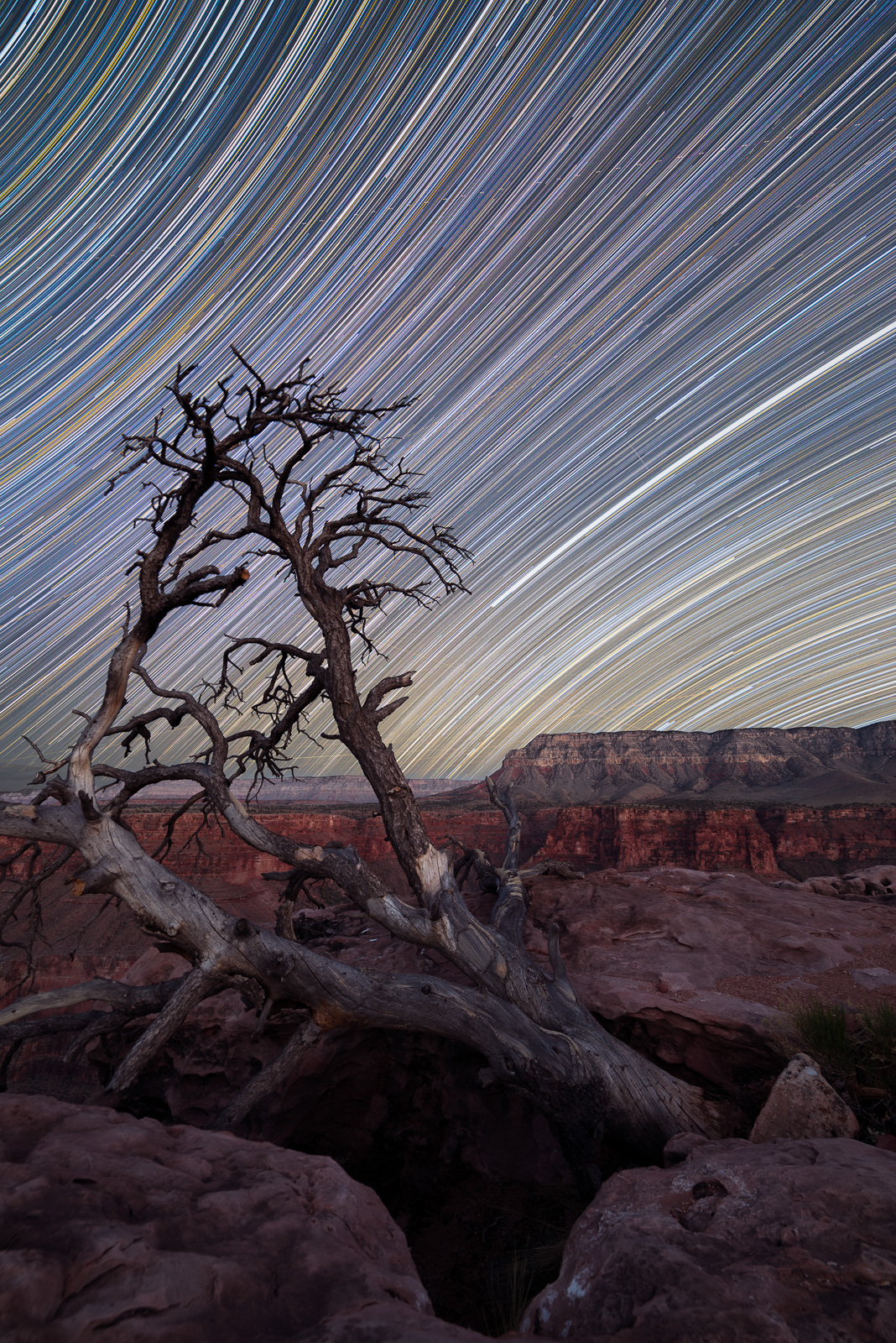 Tuweep Star Trails