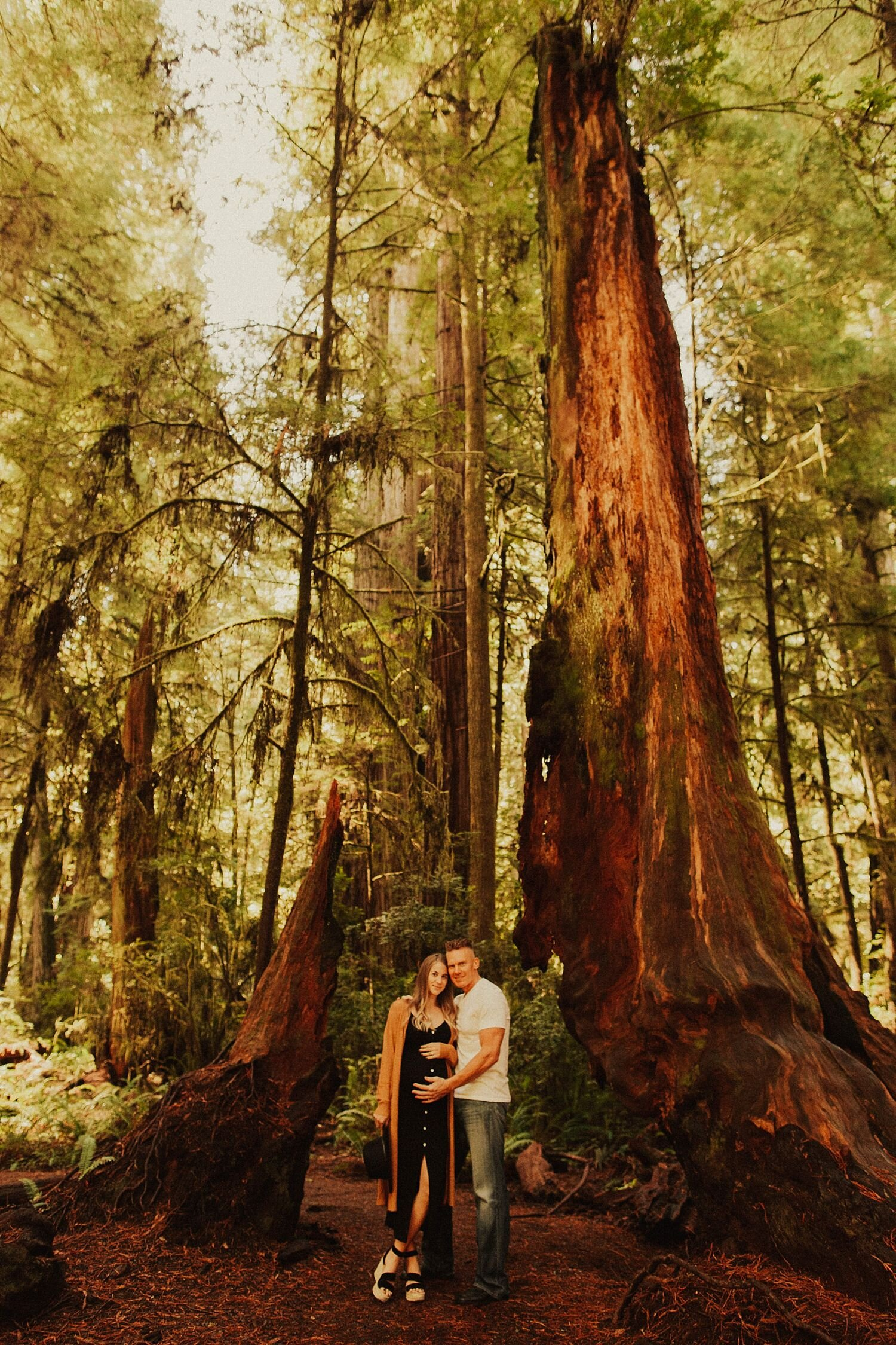 redwoods-california-maternity-photos_4272.jpg