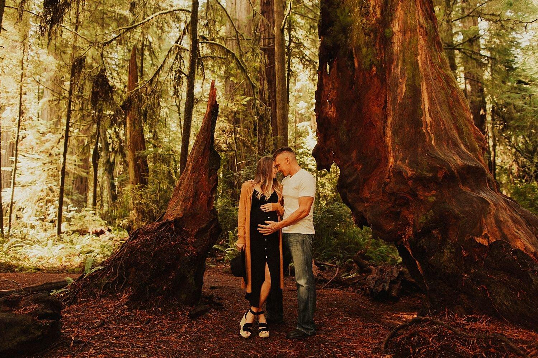 redwoods-california-maternity-photos_4274.jpg