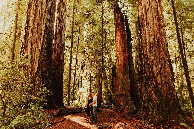 redwoods-california-maternity-photos_4275.jpg