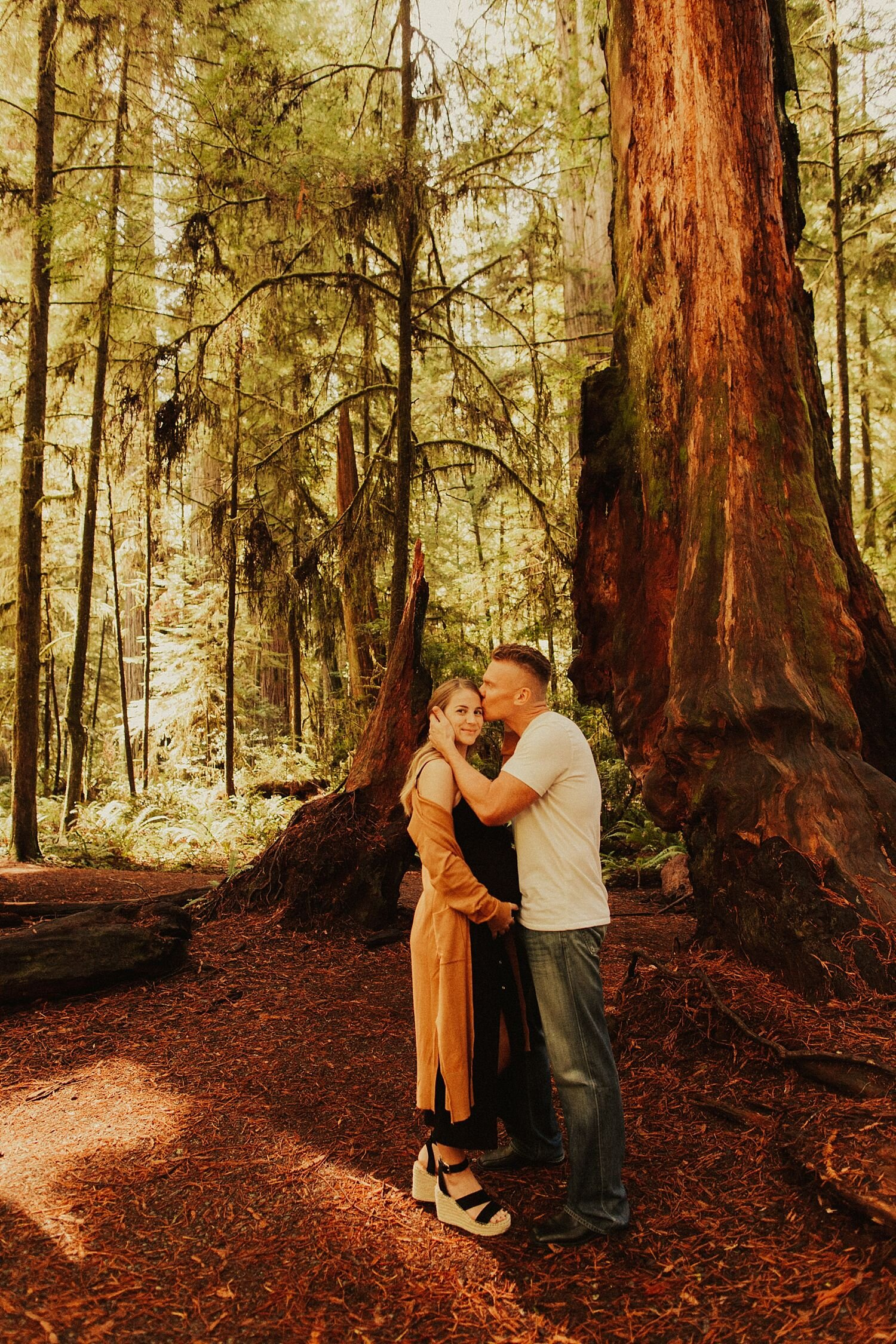 redwoods-california-maternity-photos_4276.jpg