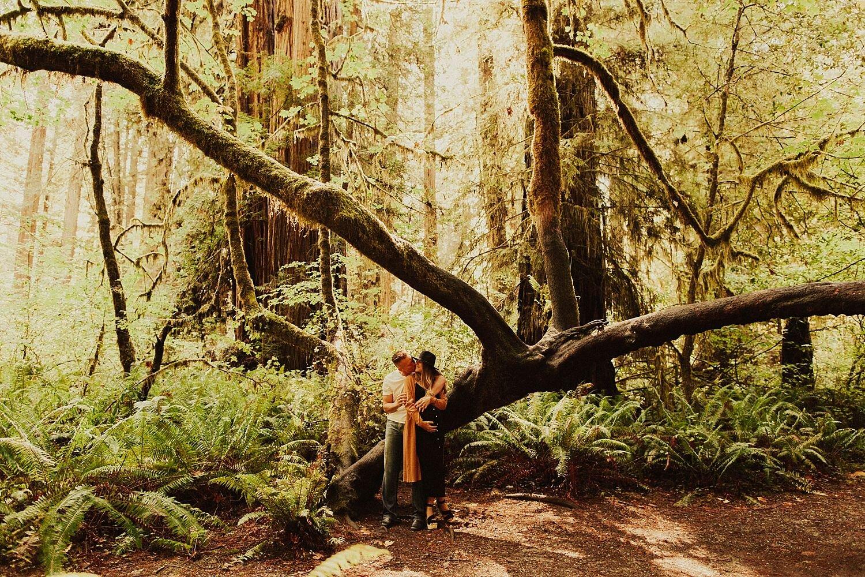 redwoods-california-maternity-photos_4283.jpg